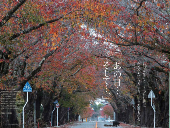 京都メディアラボ_No2_0408出稿.indd